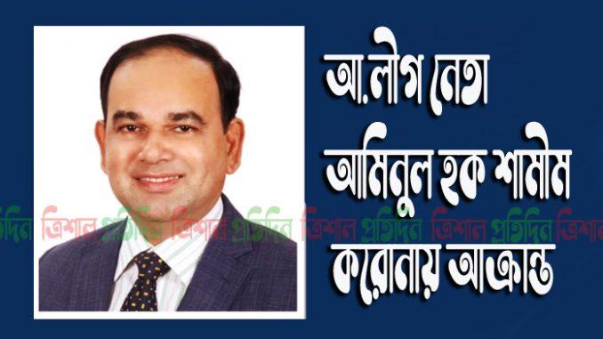 আ.লীগ নেতা আমিনুল হক শামীম